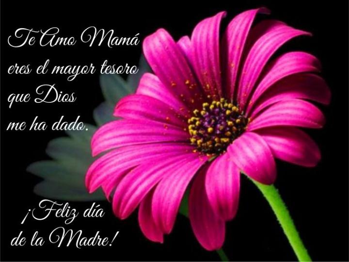Imagen - 13 tarjetas para el Día de la Madre