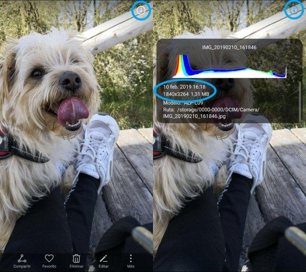 Imagen - ¿Qué son los datos EXIF de una foto?