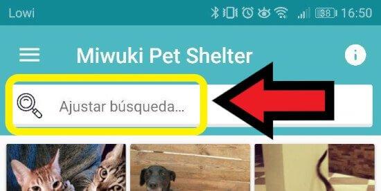 Imagen - Miwuki, el Tinder para adoptar perros y gatos