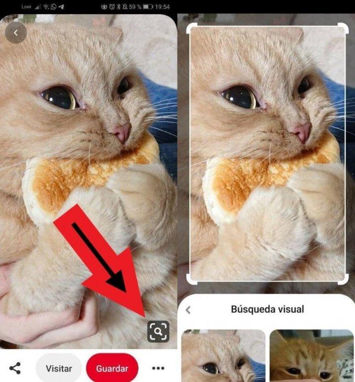 Imagen - ¿Qué es y para qué sirve Pinterest?