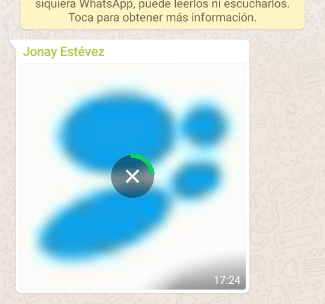 """Imagen - """"Descarga fallida"""" en WhatsApp: solución"""
