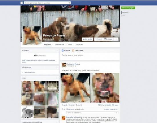 """Imagen - Facebook deniega el cierre de la página """"Pelea de perros"""""""