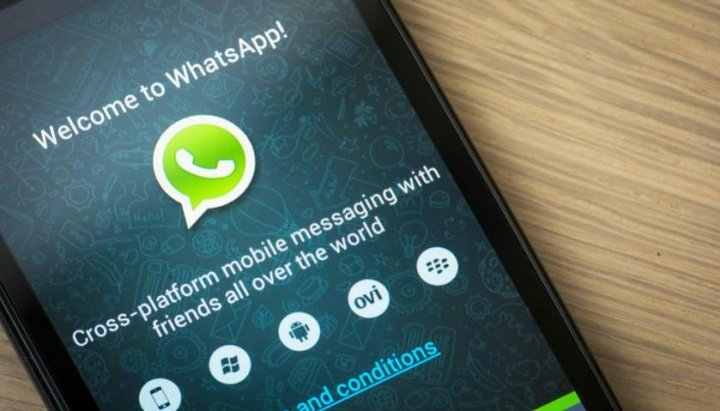 Imagen - Instala WhatsApp Beta para iOS, Windows Phone o Android
