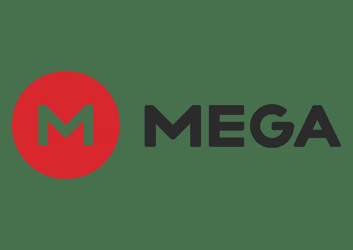Mega ya no es seguro, según Kim Dotcom