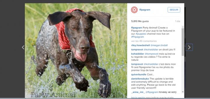 Imagen - Flipagram, crea vídeos con tus fotos de Instagram