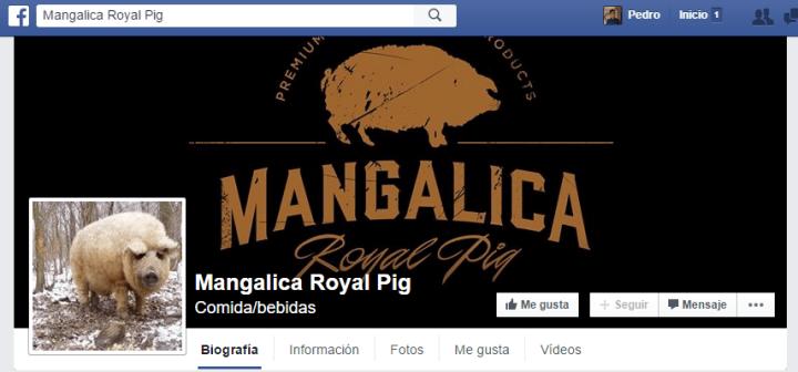 Imagen - ¿Cerdo u oveja? El desafío viral triunfa en Facebook
