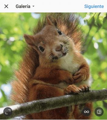 Imagen - Cómo desactivar los comentarios en Instagram