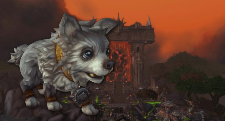 Cuidado con la estafa del regalo de una mascota en World of Warcraft