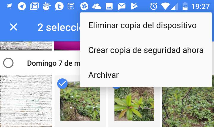 Imagen - Google Fotos ya permite archivar fotos