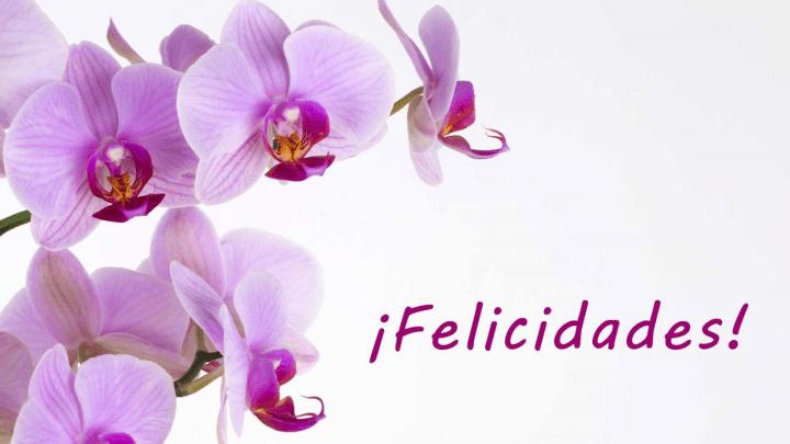 Imágenes Día De La Madre Para Whatsapp Y Facebook: 25 Felicitaciones Del Día De La Madre Para WhatsApp
