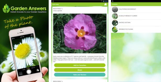 Imagen - 7 apps para identificar plantas