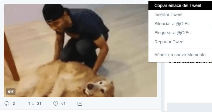 Imagen - Cómo descargar los GIFs de Twitter