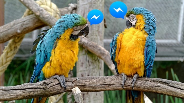 Imagen - Facebook Messenger se actualiza a la versión 2.1