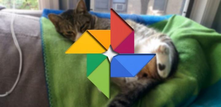 Imagen - Google Fotos elimina el almacenamiento ilimitado para ciertos formatos de vídeo