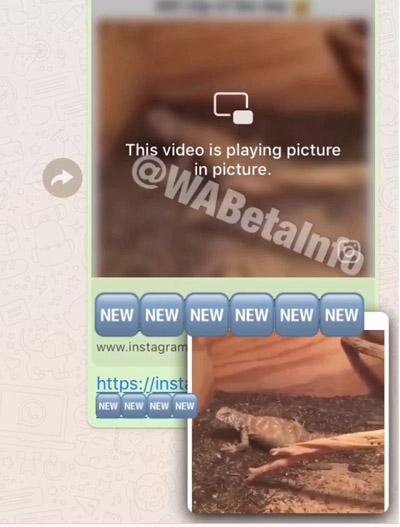 Imagen - WhatsApp ya permite ver vídeos de Facebook e Instagram sin salir de la aplicación