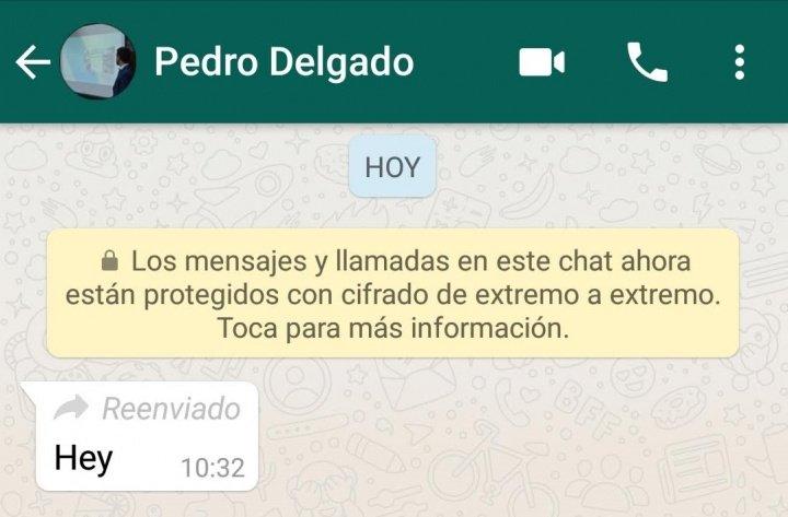 Imagen - WhatsApp ya señala los mensajes que han sido reenviados