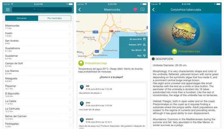 Imagen - Cómo saber si hay medusas en la playa desde tu smartphone