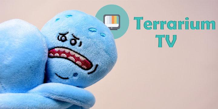 cierra-terrarium-720x360