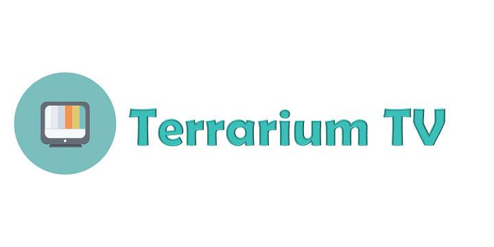 Imagen - La app Terrarium TV dejará de funcionar