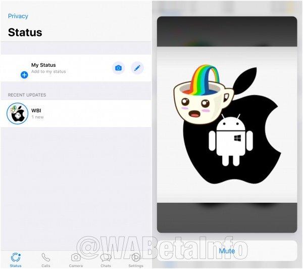 Imagen - WhatsApp permitirá añadir stickers en imágenes, vídeos y GIFs