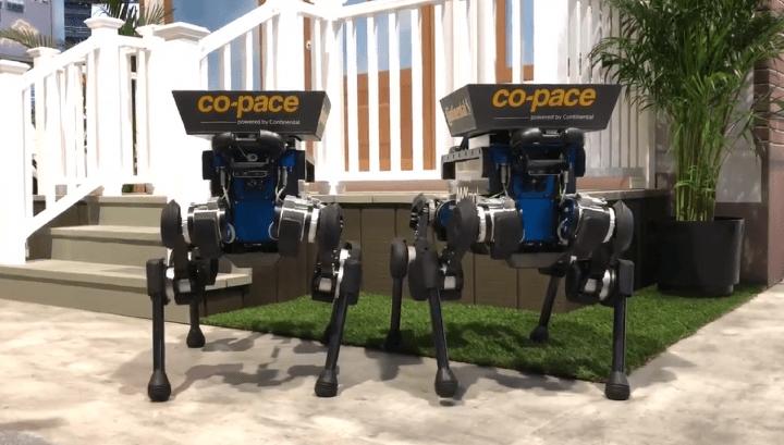 Imagen - Perros robot te entregarán los pedidos online en casa