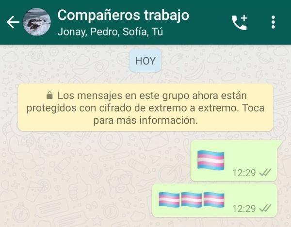 Imagen - WhatsApp beta añade un emoji oculto de la bandera trans