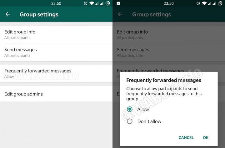 Imagen - WhatsApp permitirá restringir el envío de mensajes reenviados varias veces en los grupos