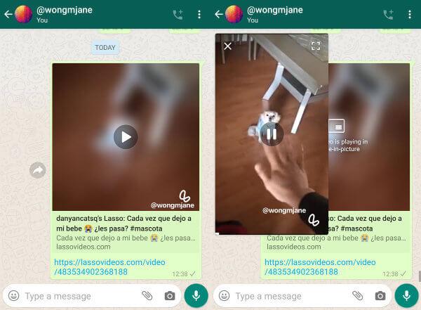 Imagen - WhatsApp se integrará con Lasso, el rival de TikTok creado por Facebook