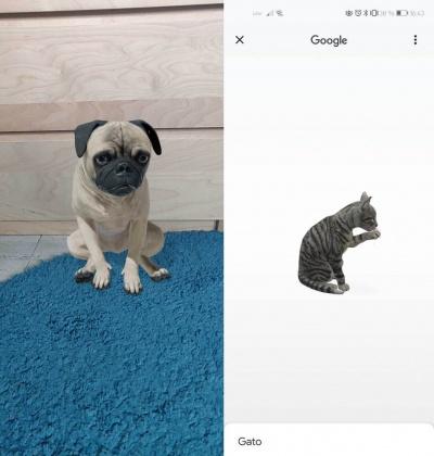 Imagen - Cómo ver animales 3D con la cámara del móvil