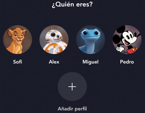 Imagen - Cómo compartir cuenta en Disney+