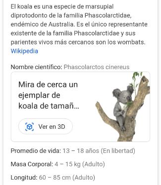 Imagen - Google añade nuevos animales 3D: quokkas, koalas y canguros