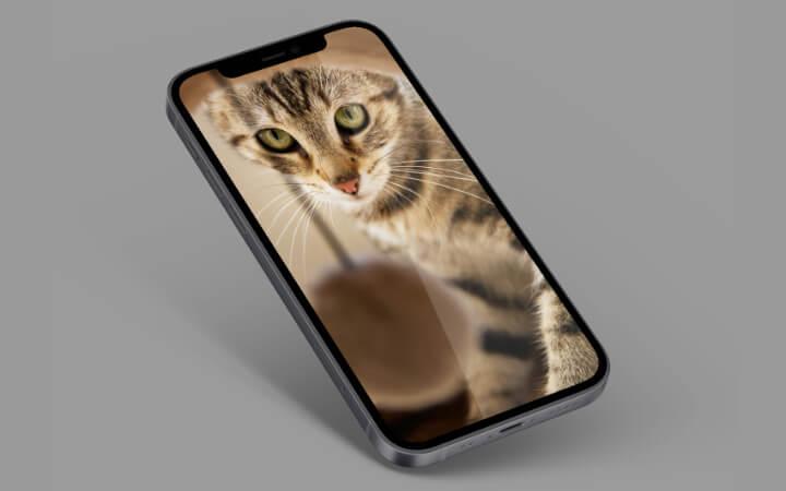 Imagen - 21 mejores fondos de pantalla para tu móvil