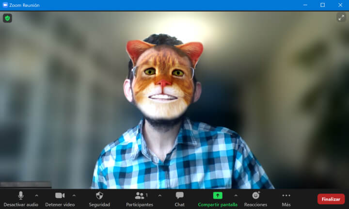 Imagen - Cómo poner el filtro del gato en Zoom