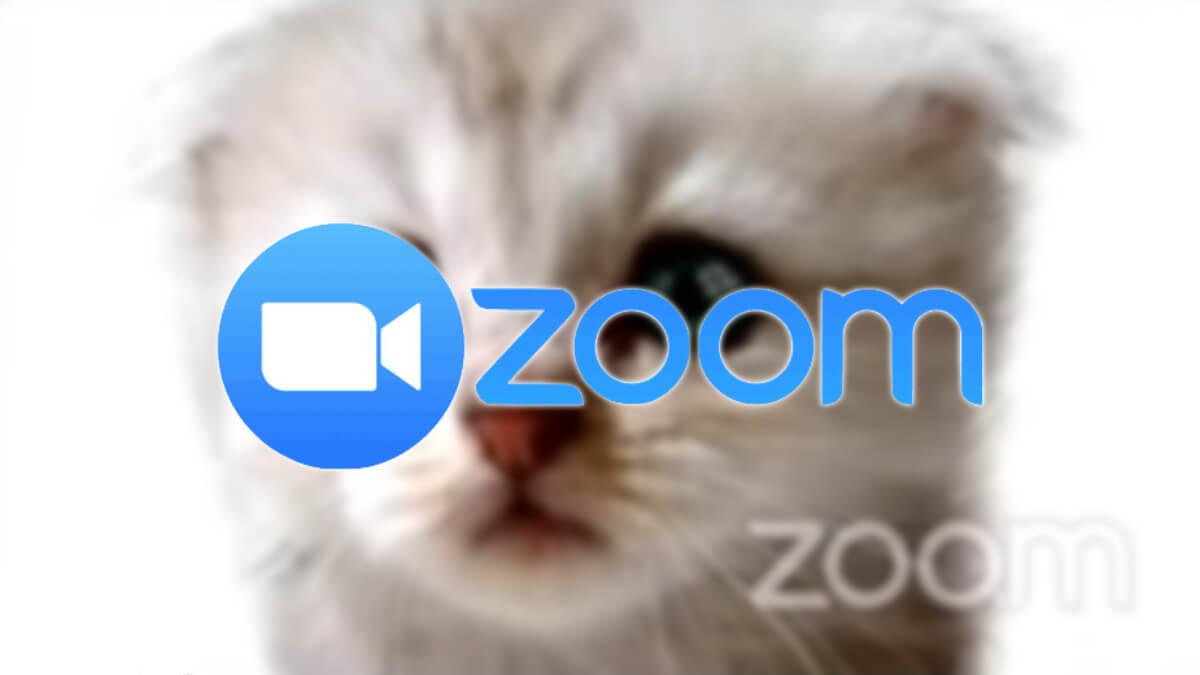 Cómo quitar los filtros en las videollamadas de Zoom