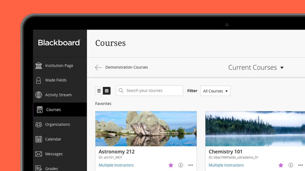 Blackboard, qué es y cómo funciona