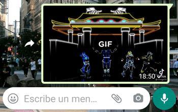 Imagen - WhatsApp ya permite enviar GIFs