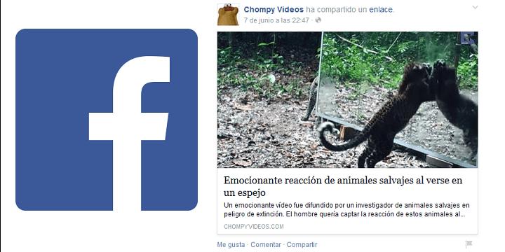 Elimina los vídeos compartidos automáticamente por ChompyVideos