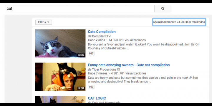 Ver vídeos de gatos te hace feliz