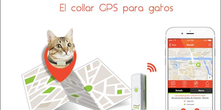 Weenect Cats, llama a tu gato cuando se escape
