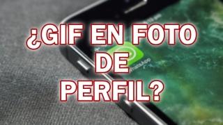 ¿Es posible poner un GIF como foto de perfil en WhatsApp?