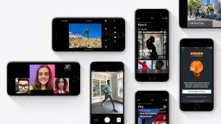 Un iPhone 12 económico llegaría a principios de 2021 sin una importante característica