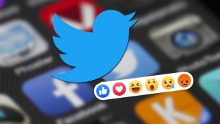 Un error permite ver los Twitter Fleets tras 24 horas