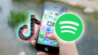 Spotify y TikTok se cierran en iOS por problemas desconocidos