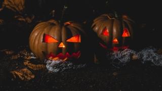 6 aplicaciones para disfrutar de Halloween 2020