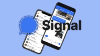 8 trucos para Signal que deberías conocer