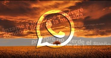 47 frases de buenos días para enviar por WhatsApp