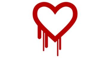 Un fallo de seguridad afecta a todo Internet