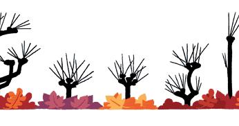 Equinoccio de otoño, el Doodle de Google hoy