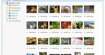 Cómo recuperar fotos eliminadas en Android