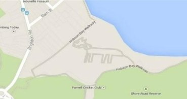 Descubren un misterioso gato en Google Maps
